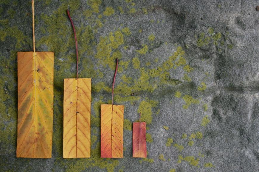 geometric-autumn-iiijpg