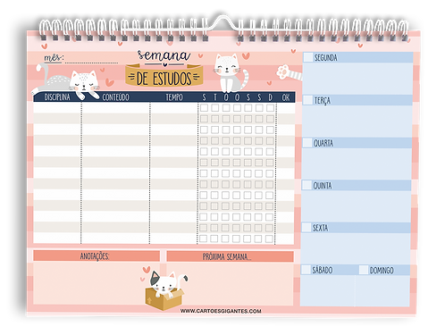 Wall Planner | WP 06