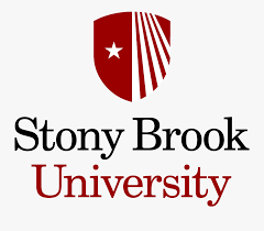 stony brook.png