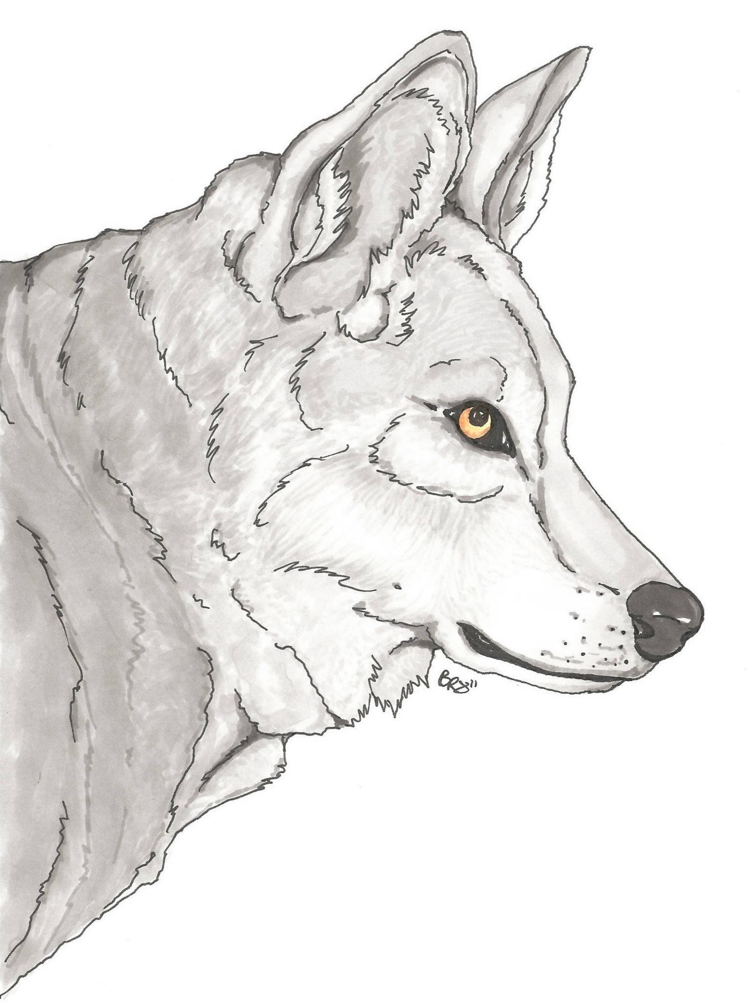 Grey Wolf - Marker Piece