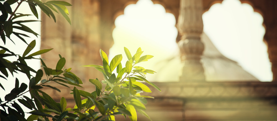 The Ayurveda Series: Introduction