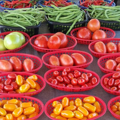 Vegetables_1.jpg