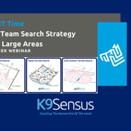 GMT Offering: K9 Team Search Strategy
