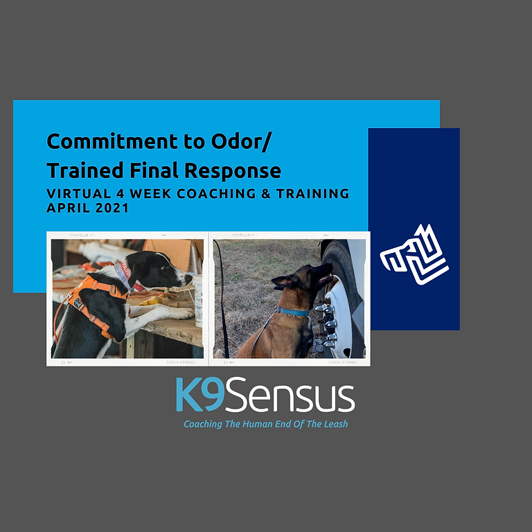 Commitment to Odor/Trained Final Response > Virtual April 2021