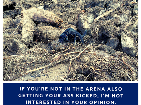 If you are not in the arena...