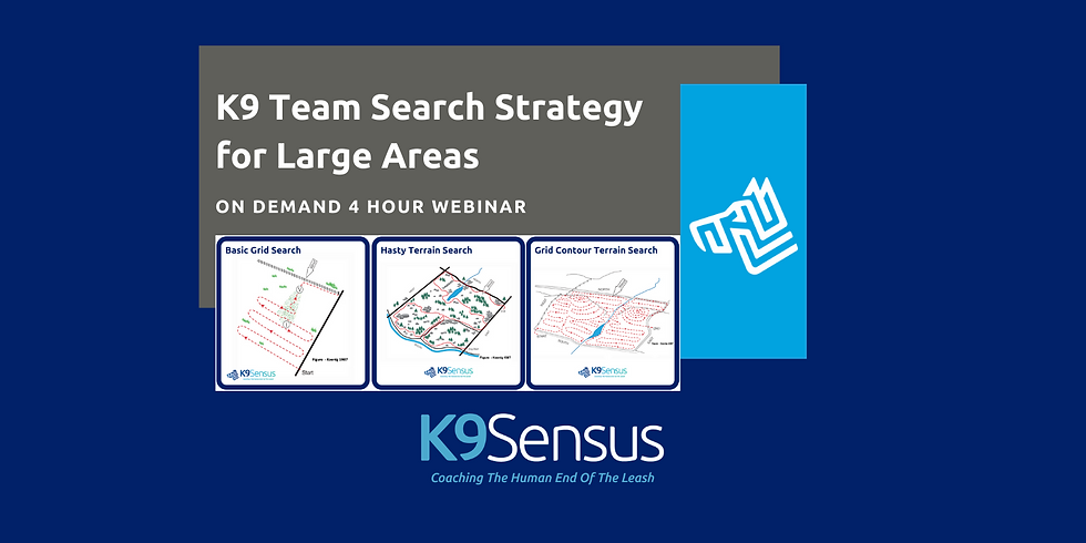 On Demand Webinar > Search Strategy for Large Areas