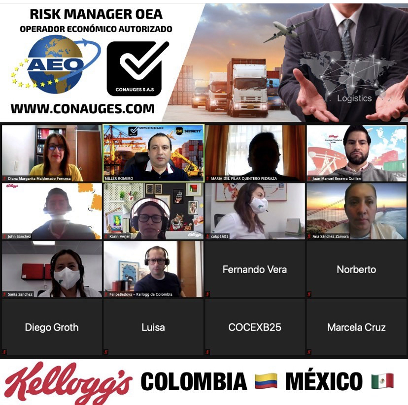 RISK MANAGER OEA