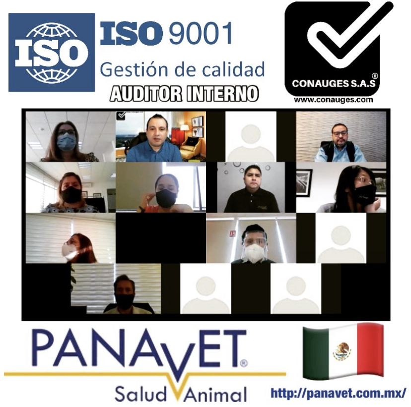 AUDITOR INTERNO ISO 9001