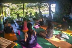 GoNatural_yoga class