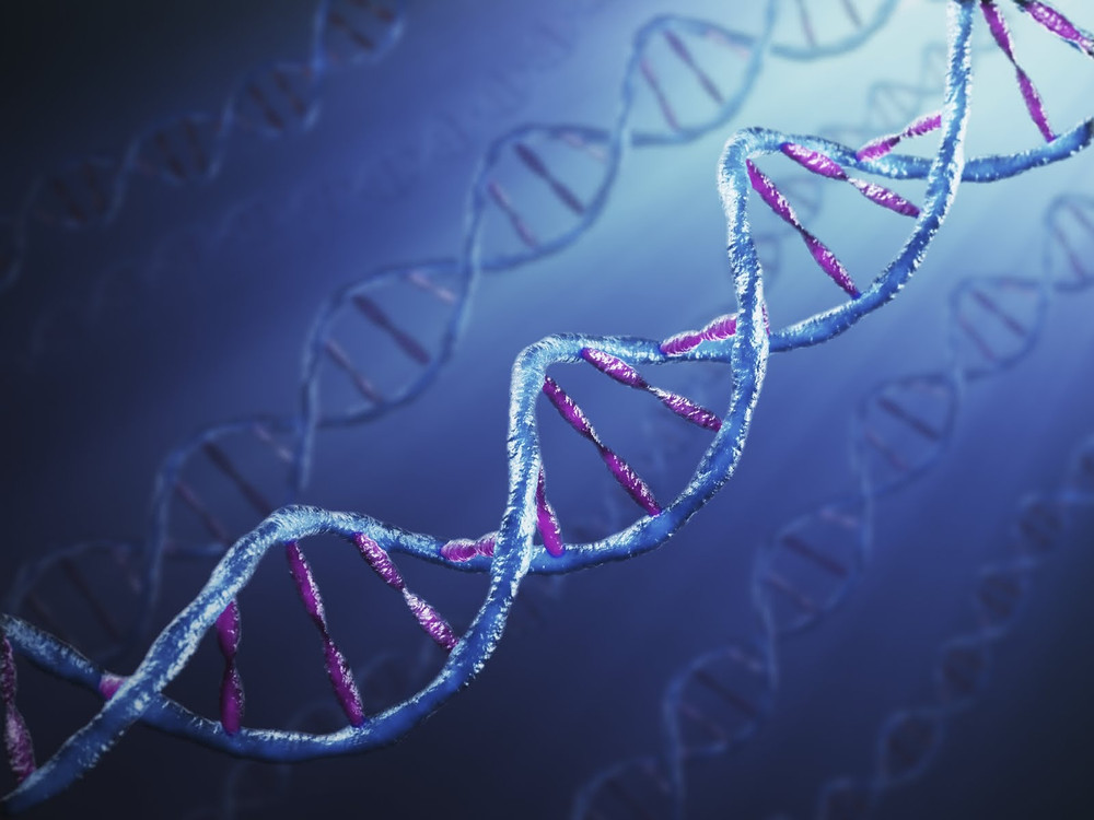 DNA-helix.jpg