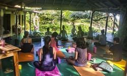 GoNatural_yoga classs