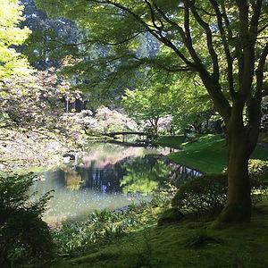 Nitobe_Garden_All_day_retreat_edited.jpg