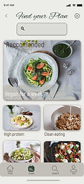 17 - meal Plan.jpg