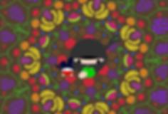 ninja 6_ver 4(expanded fruits).png