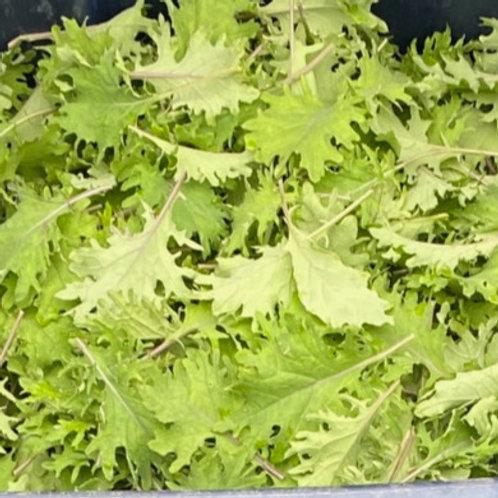 Greens, Baby Kale 5 oz