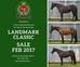 Landmark Classic Sale Horses 2017