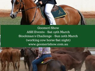 Australian Stock Horse Events + Stockman's Challenge