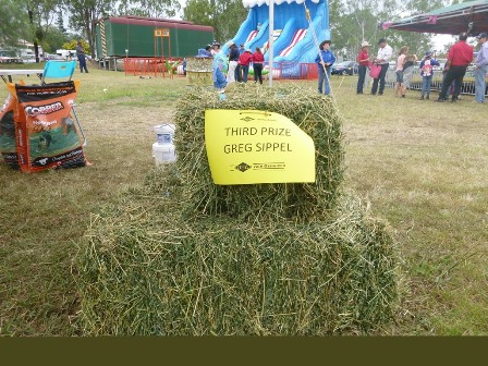hay Competition - = 3rd