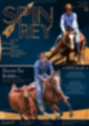 Spin Rey Advert.PNG