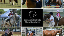 New Horse Program 2017