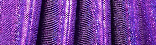 Micro Dot Purple Hologram (Paula Purple)