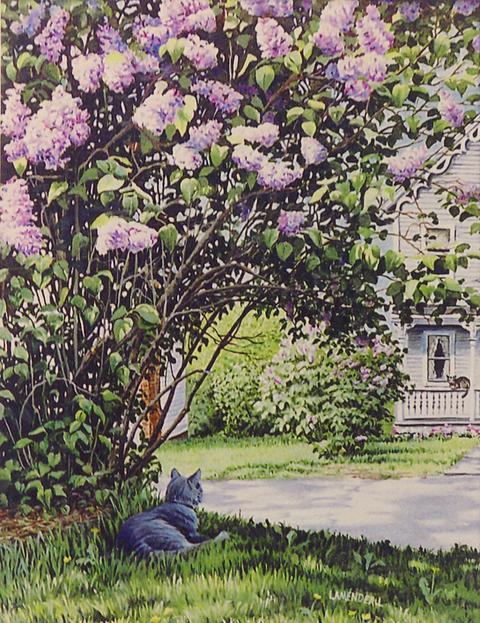 """""""Under The Lilacs"""""""