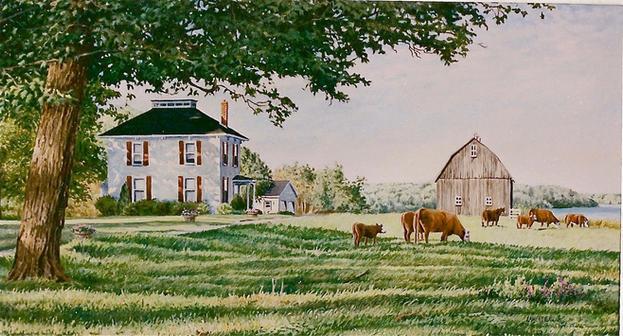 """""""Blair Farm"""""""