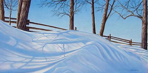 The Snow wave.jpg