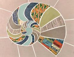 expanding thought nautilus-style