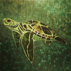 bayou turtle