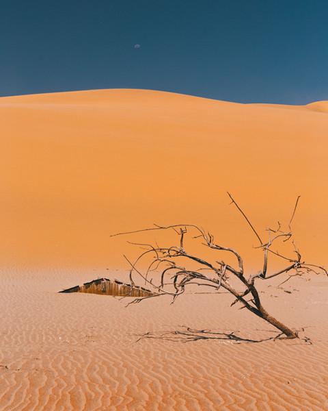 Namibie - Septembre 2018