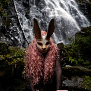 The Rabbit and the Waterfall.jpg