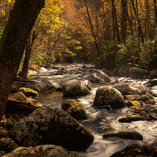 River of Beauty.jpg