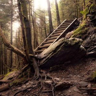Mount Mitchell Get To Steppin.jpg