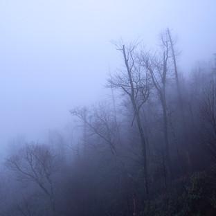 Ghost World.jpg