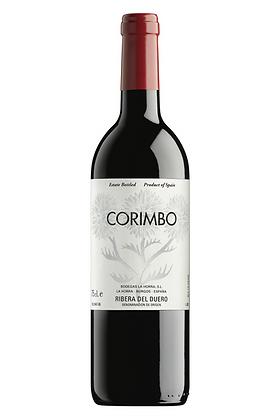Corimbo 2014
