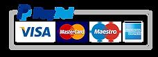 paypal-logo-payment-venezia-profumi.png