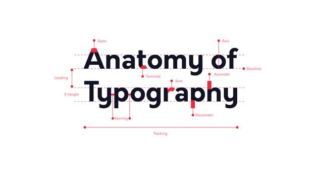 AnatomyOfTypography.jpg