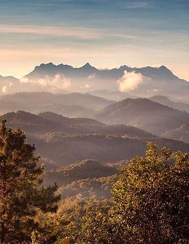 @tourismthailand.jpg
