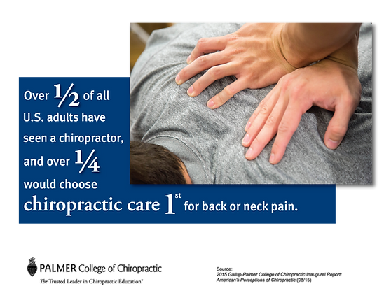 Chiropractor Daytona Beach