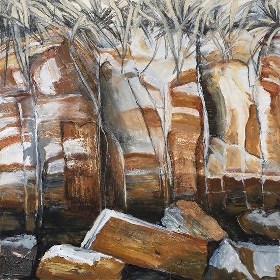 Darwin rocks   by Gay Emmerson