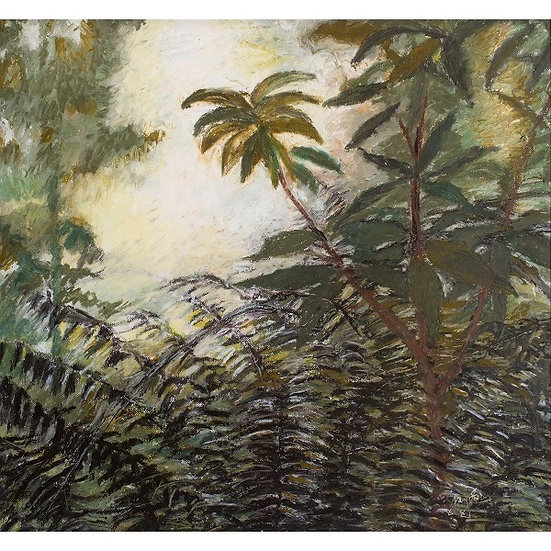 Valley of Ferns by Gay Emmerson