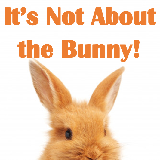 It's Not About the Bunny