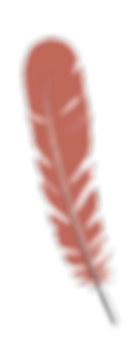 FEATHER-HEADER-2018-D.png