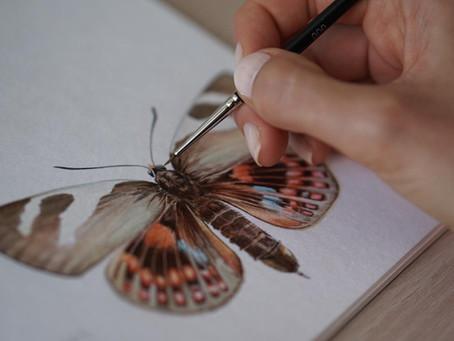 Sobre los insectos polinizadores