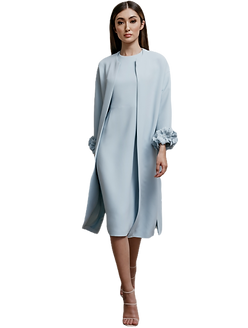 blue coat dress by catherine regehr