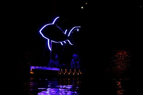 Blue bull shark#2.jpg