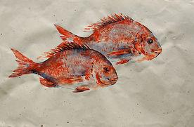 Gyotaku fish print Sunday 5th May 2019 .