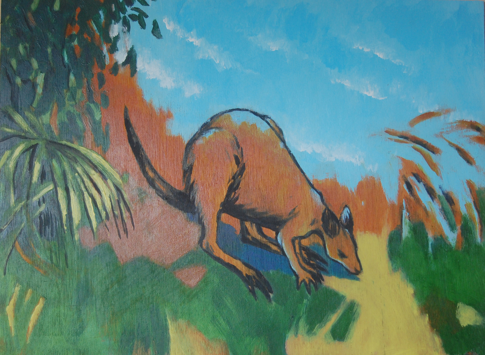 Era wallaby