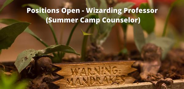 Positions Open Wizarding Professor (Summ